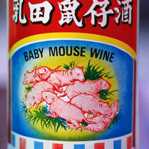 Baby Mouse Wine